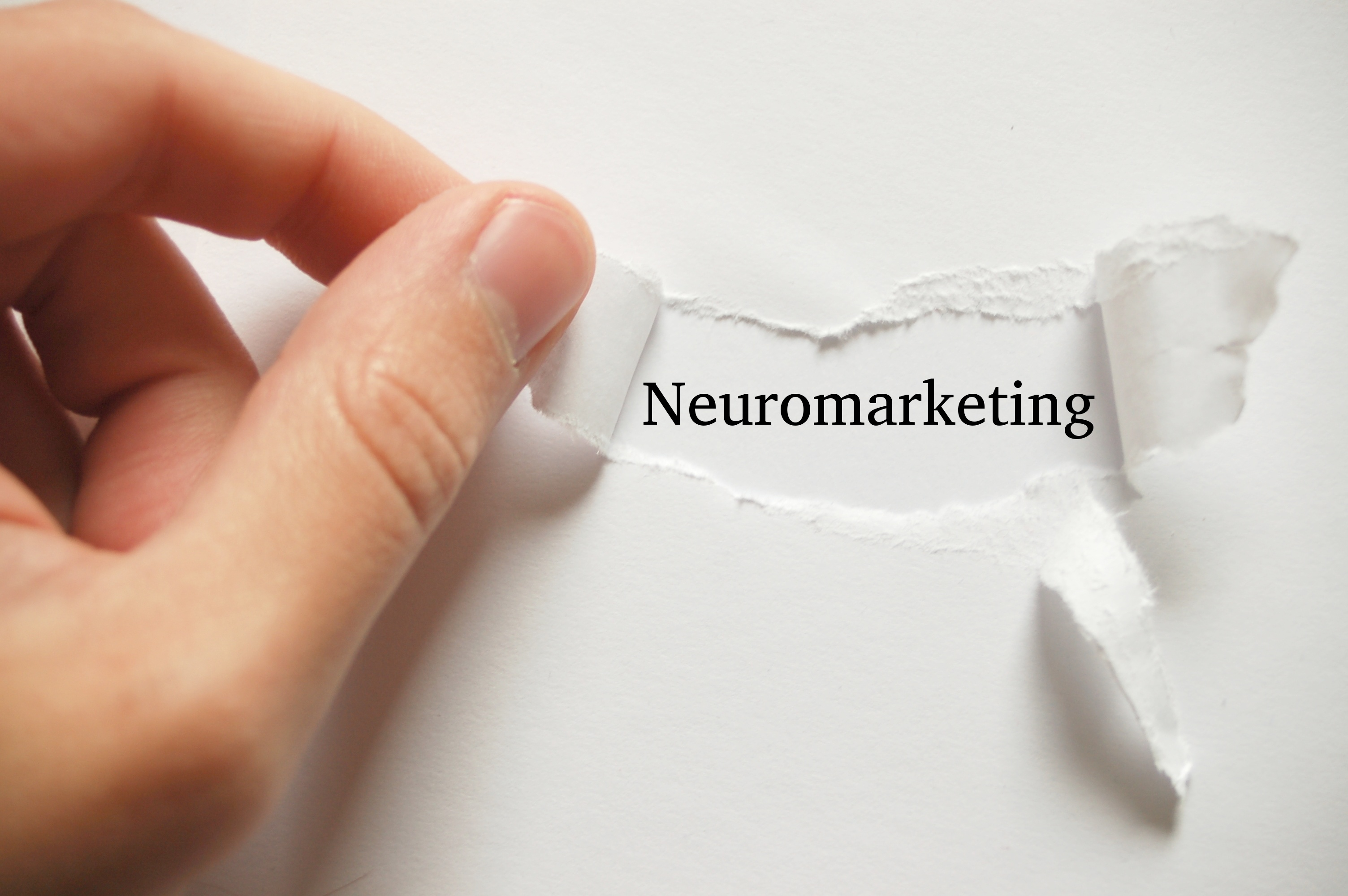 Neuromarketing: le scienze cognitive per vendere sul web